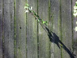 Cómo limpiar una cerca de madera manchada de agua