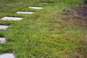 Cómo calcular las yardas Cubed de suciedad para un patio trasero