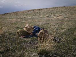 Los mejores Hierbas para plantar en el suelo franco arenoso de Tejas