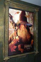 El cuidado de un suculento de Hobbit