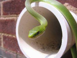 Cómo utilizar una serpiente de fontanería en un inodoro