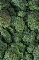 ¿Cuántas veces producir una planta de brócoli?