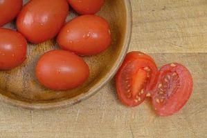 Cuando plantar las semillas de Tomate Roma