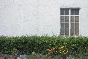 Cómo instalar y aplicar estuco a un Panel de cemento