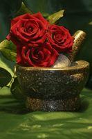 ¿Cómo puedo conservar las rosas con glicerina?