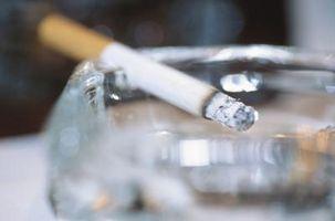 El mejor filtro de la caldera del tabaco olor a humo