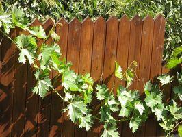 Cómo instalar una cerca para mantener su vecino fuera