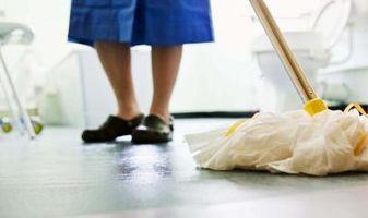 Bissell Limpieza del hogar