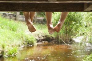 Las instrucciones para los puentes de madera del pie