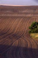Clasificación del suelo Tamaño de grano