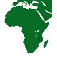 Las plantas en los desiertos africanos
