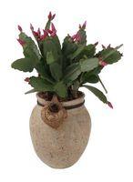 Cómo hacer una flor de la flor del cactus