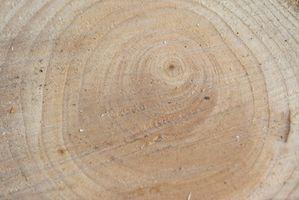 Lista de herramientas de corte de madera