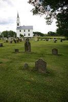 Tipos de musgos que crecen sobre las piedras del cementerio