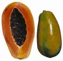 ¿Cómo hacer crecer un árbol de papaya en una olla grande