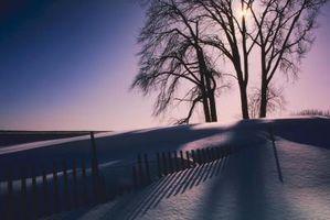 Cómo instalar un rollo de madera Nieve Esgrima