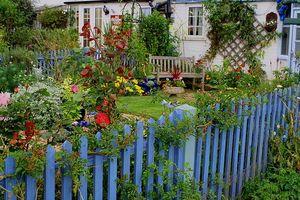 Información sobre poda de plantas al aire libre para el otoño