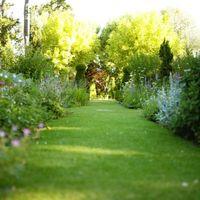 Cómo hacer su propio camino Grass Trail