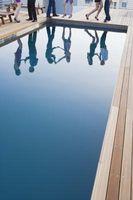 ¿Cómo puedo borrar algas para arriba en una piscina de agua salada?