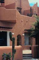 Las grandes plantas ornamentales Cactus