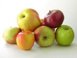 Las variedades de manzanas y tiempos de cosecha