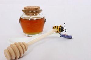 Las Mejores Flores para la miel