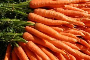 Cómo cultivar zanahorias como planta de interior