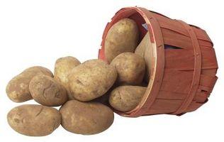 Lo que se puede plantar en la cima de patatas?