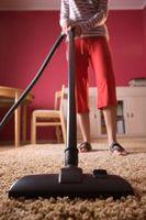 ¿Qué causa un olor agrio en la alfombra mojada?