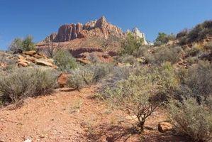 Cómo minimizar Uso del acondicionador de aire en Nevada