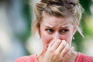 Cómo cubrir el olor a vinagre de limpieza