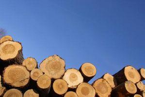 Cómo aplicar poliuretano de Registros del pino para el asiento
