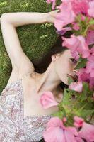Como las flores florecen en julio
