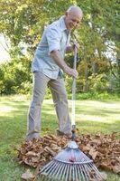 Cómo preparar el compost con éxito en el jardín