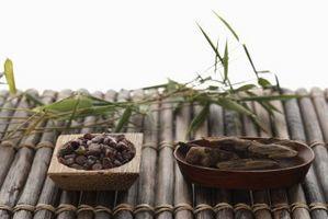 Cómo plantar bambú como una pared decorativo