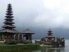 Plantas adecuadas para jardines de Bali