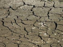 Maneras de conservar el agua y Suelo