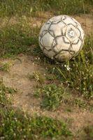 Las descripciones de malas hierbas del césped
