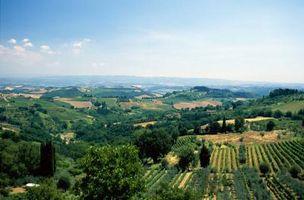 Toscana Estilo colores de pintura para la decoración de interiores