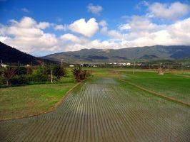 El uso de fertilizantes en la agricultura