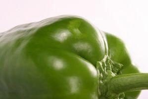 Solución de problemas de pimiento verde Plantas