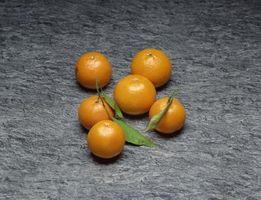Cuándo cosechar naranjas enanas?