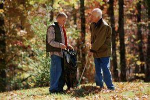 ¿Soy responsable por las hojas de los Mi árbol que caen en el patio de mi vecino?