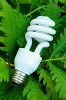 Eco y verde de ahorro de energía de productos para su hogar
