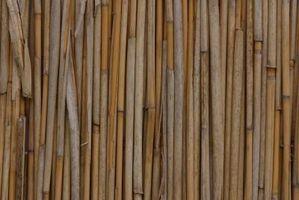 Son la caña de bambú polacos y la misma cosa?