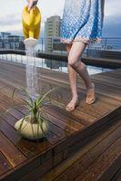 Que hace de suelo ayudan a las plantas a crecer mejor que el agua?