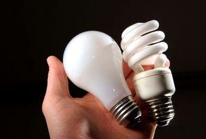 Hace un fluorescente Ayuda Luz Las plantas crecen mejor que una incandescente?