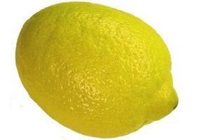 Será de jugo de limón en spray romper el ciclo de vida de pulgas?