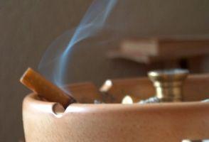 Efectos del humo del cigarrillo en las plantas