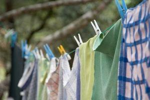 Extracción de lavandería moho olor